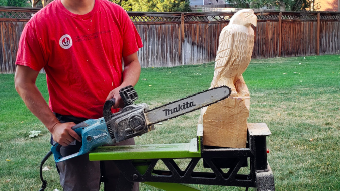 Can you chainsaw carve with an electric chainsaw u diywoodart
